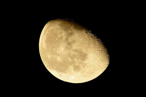 Moon Moon Moon (Age 19.5)