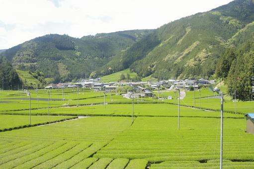 시즈오카 현 푸른 풍경 3