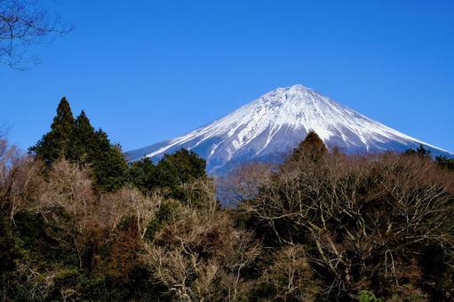 [Yamanashi] Shiraito Falls and Mt. Fuji (winter)