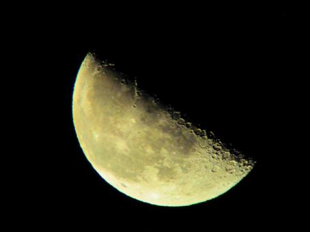 First quarter moon (photographed on 2021/02/05)