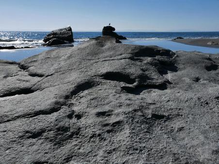 암초가있는 해안