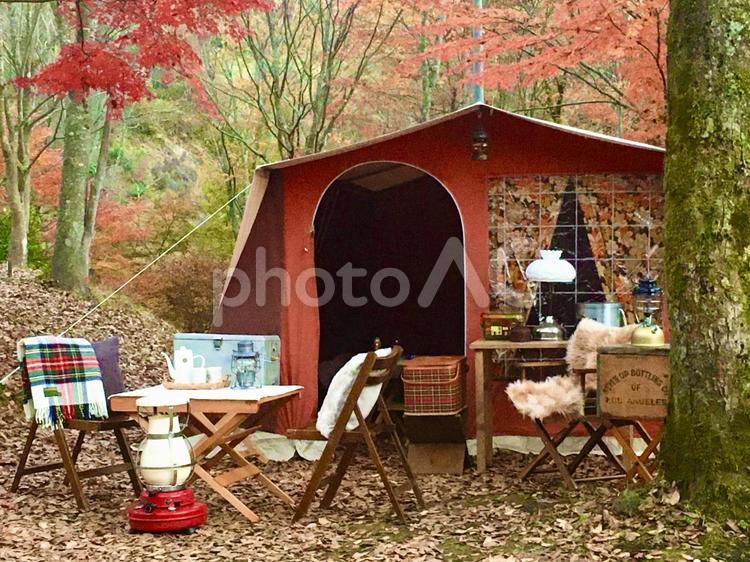 紅葉キャンプの写真