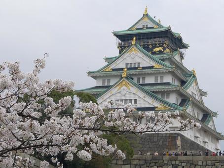 大阪城和樱花