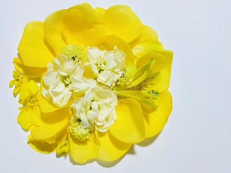 Yellow flower circular