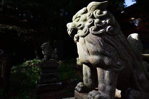 Shrine guardian dog