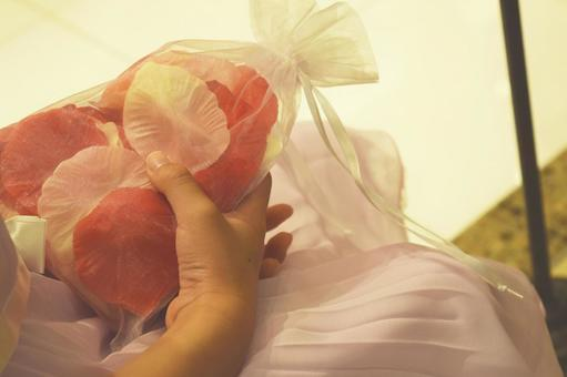 Bridal _ petals