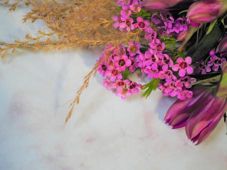 자연 꽃 프레임 ~ 가을 경치 ~