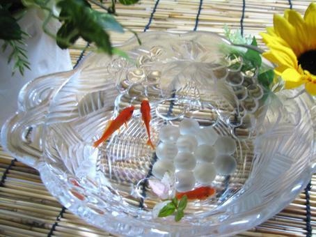 Goldfish 14