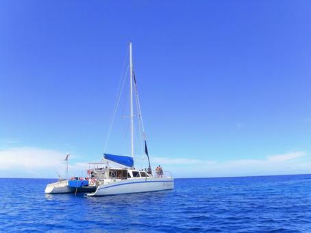 Hawaii Sea 6