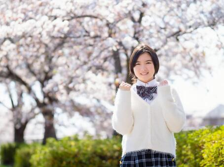 Graduation Sakura Enrollment Image of high school girls Guts pose