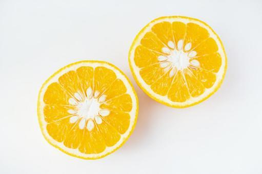 Amanatsu orange 14