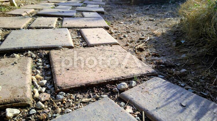 庭の敷石の写真