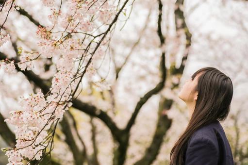 Sakura and a girl