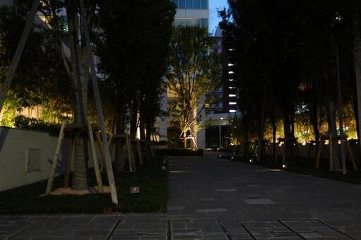도쿄 시바 우라 주변 1
