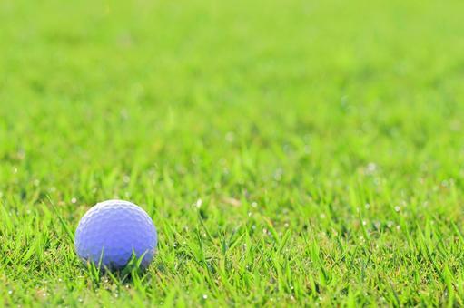 Golf Ball Lawn Green Shot Putter Tee Up Approach Texture