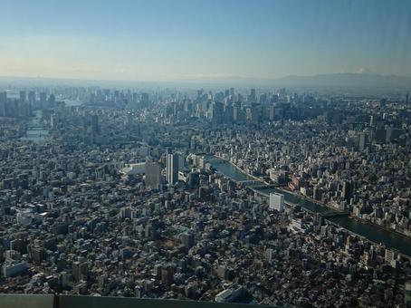 스카이 트리에서 본 도쿄 도심
