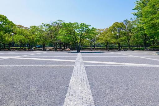 Yoyogi Park Event Plaza surrounded by fresh green zelkova