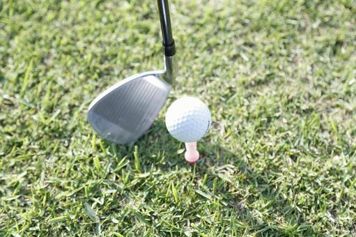 Grass club and golf ball 13