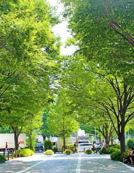 Urban greening oasis 2 Vertical