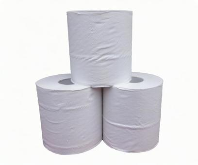 3 toilet papers (with PSD)