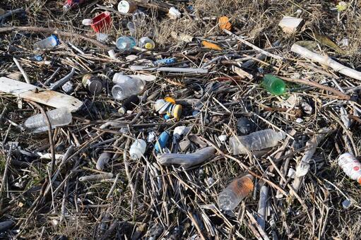 쓰레기 문제 환경 문제 해안 표 착물