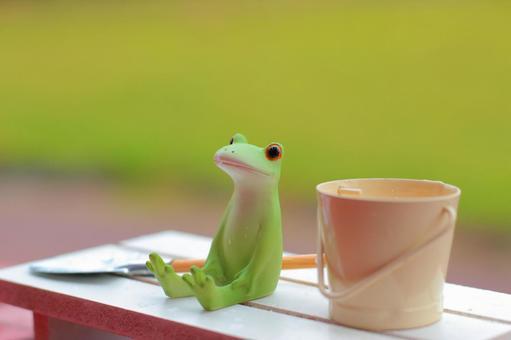Frog rest