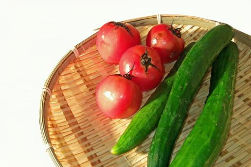 Tomato and cucumber # 15