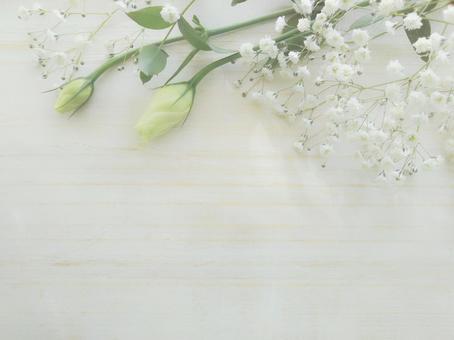 흰 꽃 프레임 부드러운 나뭇결 배경