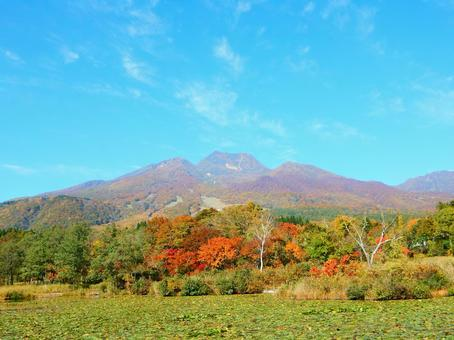 Myoko Series (Newt pond and Myoko mountain in autumn)