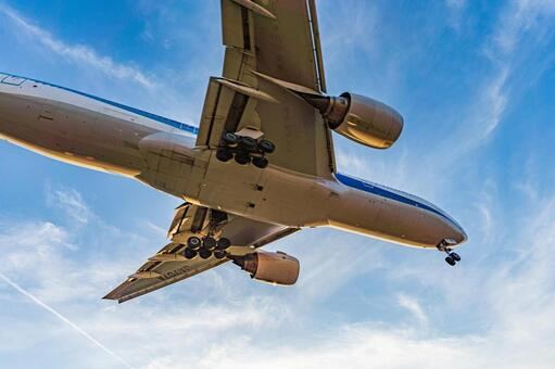 Airport Plane (Itami Airport) 101