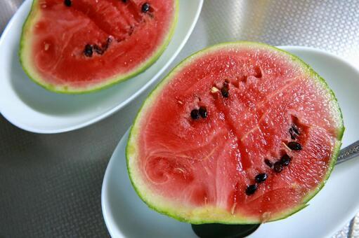 Mini-suika watermelon