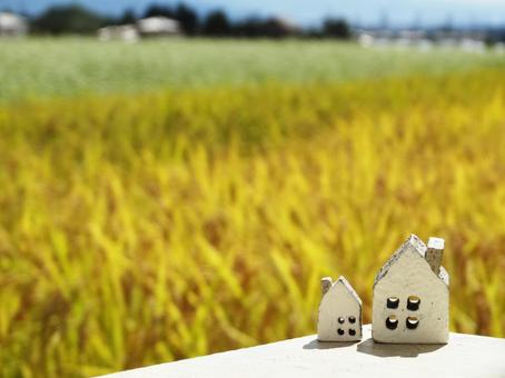 2 small items of the house and the distant view of the flowers and rice in the soba