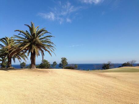 Golf course fairway and sea