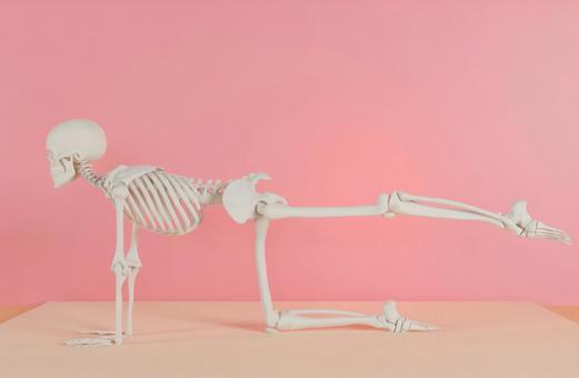 Skeleton taking a yoga pose