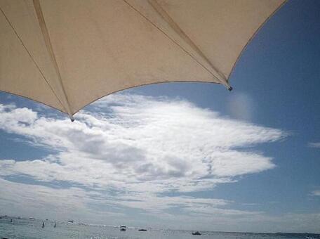 남국의 해변