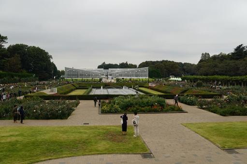 도쿄 진다이 식물 공원