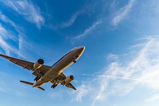 Airport Plane (Itami Airport) 98
