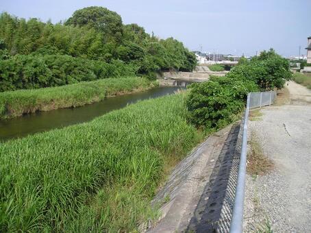 夏天下午河