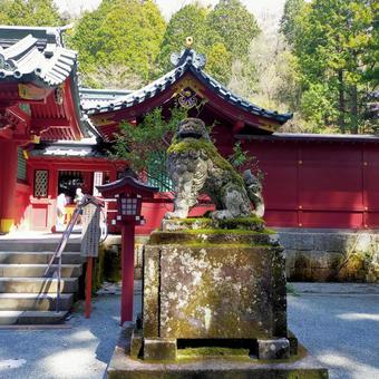 Hakone Shrine guardian dog