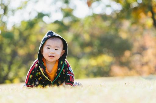 Baby hi-hi in the autumn park