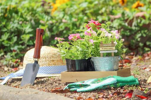 在白天的室外園藝工作