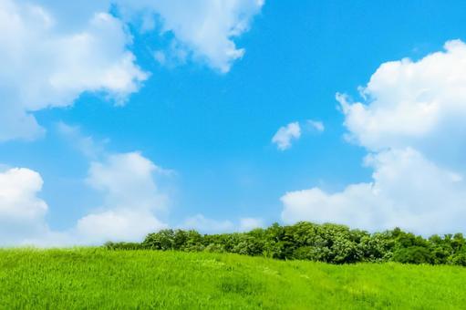 푸른 하늘 신록 구름