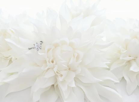 White dahlia and engagement ring