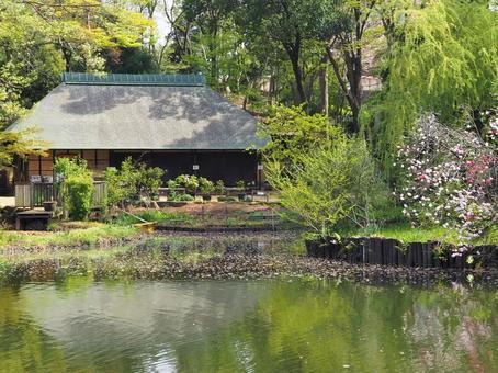 물가에 위치한 고민가 [요코하마] 仲町台 시냇물 공원