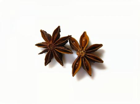 Two octagons (star anise)