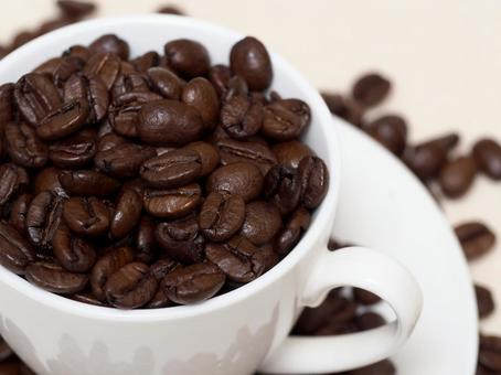 커피 콩 8