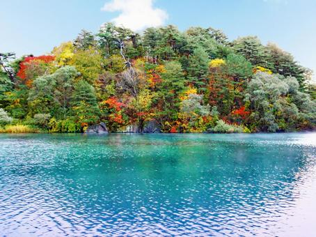 Lake・Momiji