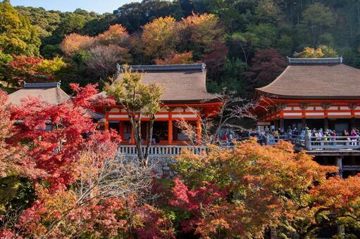 Autumn leaves Kiyomizu-dera Okunoin and Amitabha