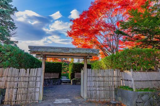 Yurigahara Park Japanese Garden Entrance Gate Autumn Leaves Season