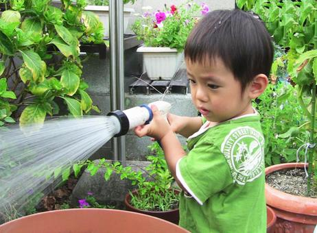 Assistance in watering